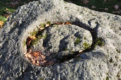 Istoriniai Kretingos akmenys