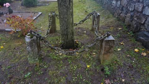 Tvorelė aplink monumentalų kryžių Salantų partizanams atminti