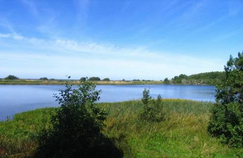 Plazės lake, bird watching hut