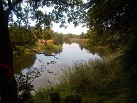 Velnio akmens įlanka Danės upėje ties Tauralaukiu