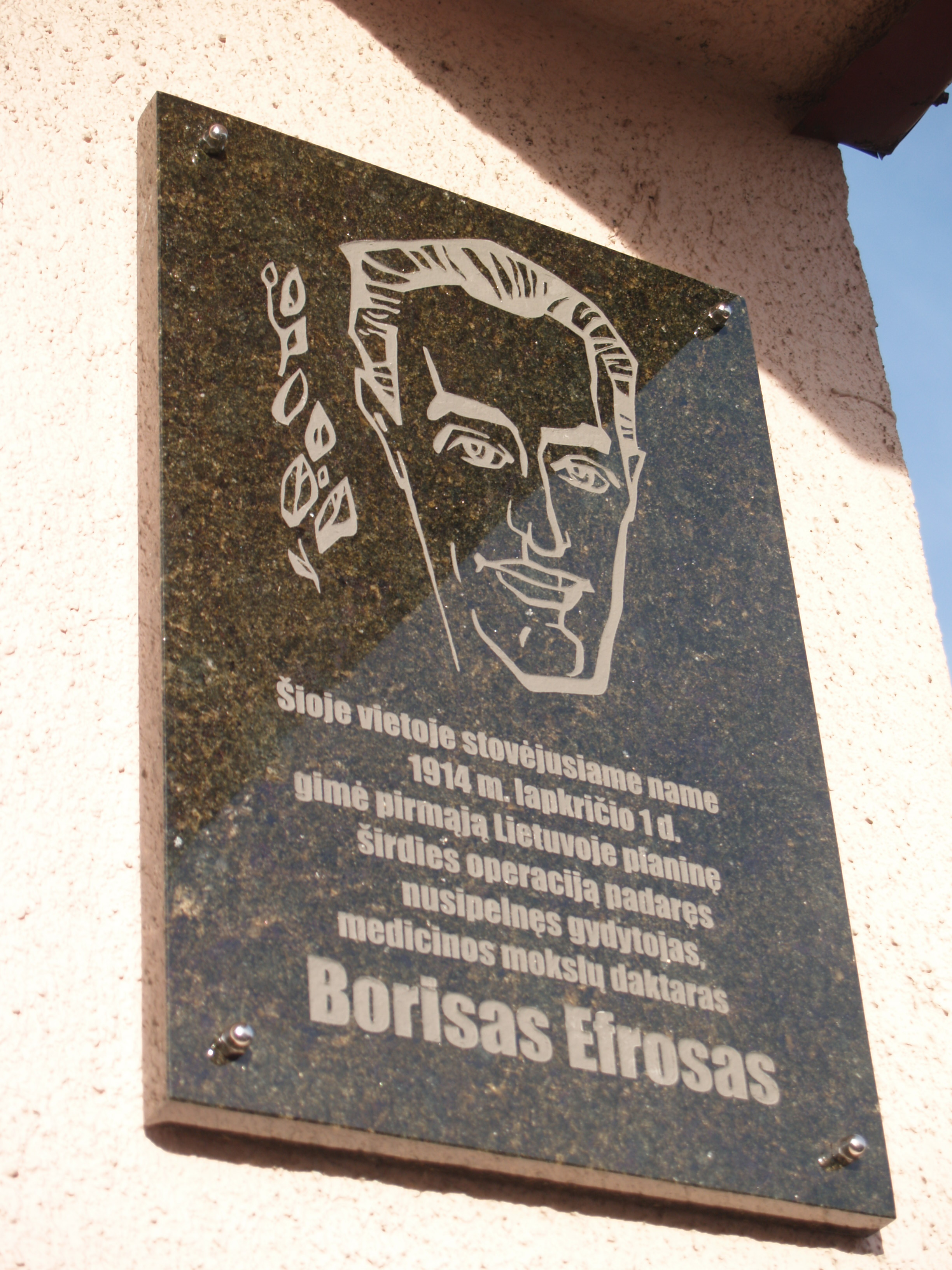 Memorialinė lenta dr. Boriso Efroso atminimui